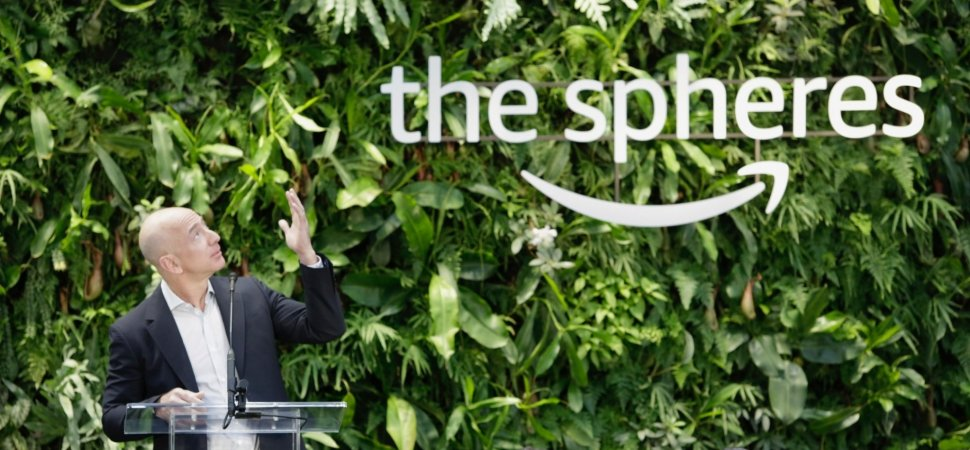AMAZON BIOPHILIC